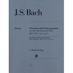 BACH J.S. HN294, TRIO SONATA AND CANON PERPETUUS B
